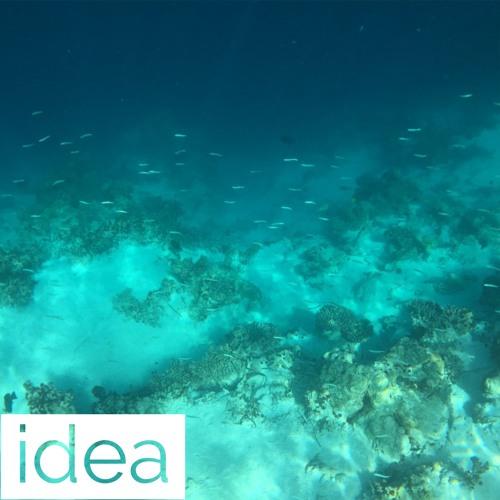 idea #2 (Concept Soundtrack)