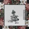 147 Calboy Adam & Eve Ft. Lil Crush (Cover/Remix)