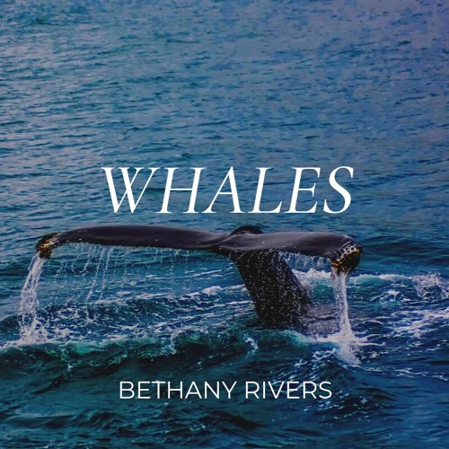 Whales // Bethany Rivers
