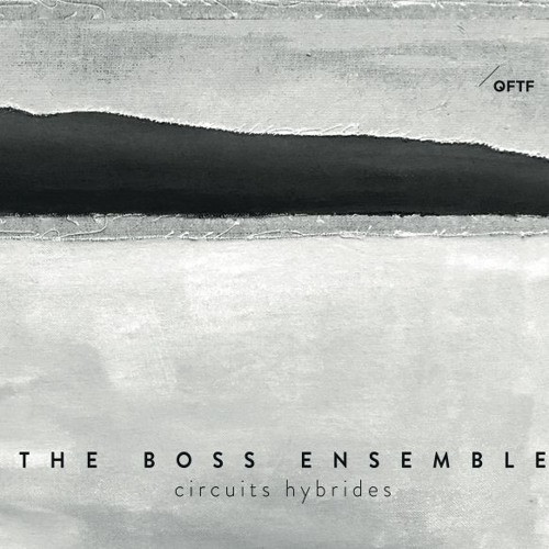 The Boss Ensemble - Circuits Hybrides