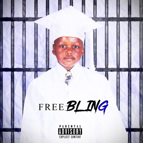 FREE BLING (Official Audio)