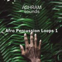 ASHRAM Afro Percussion Loops 1 (24bit WAV Loops) Demo Song