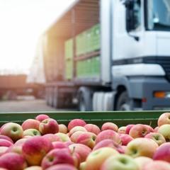 Podcast de la FAO - Comment lutter contre les pertes et le gaspillage alimentaires?