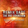 Rmx The Big Unknown
