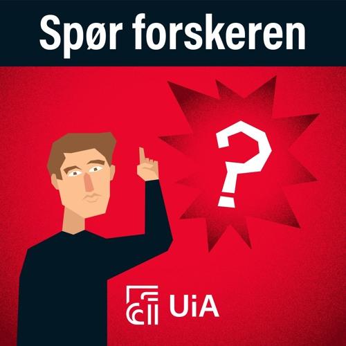 Ep. 1 - Kan digitale kanaler flytte makt fra politikerne til folket, prof. Øystein Sæbø?