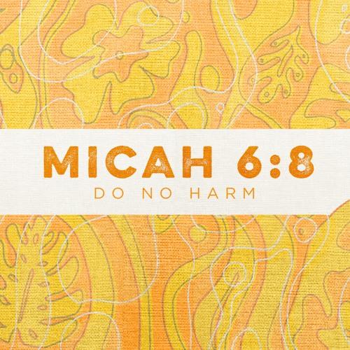 Micah 6:8 | Do No Harm | Sermon by Pastor Amy