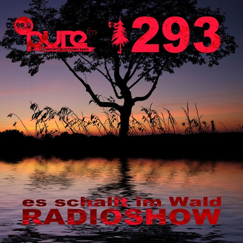ESIW293 Radioshow Mixed by Cult Jam