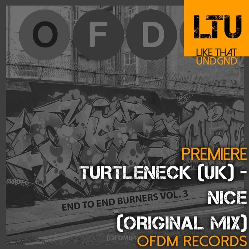 Premiere: Turtleneck (UK) - Nice (Original Mix) | OFDM Records