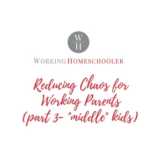 How Homeschooling Reduces Chaos Part 3 - Middle Kids