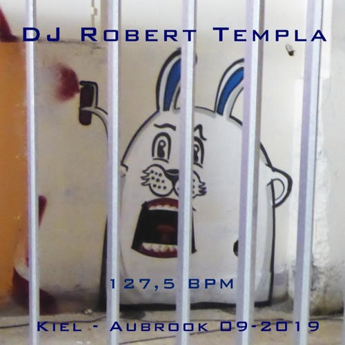 DJ Robert Templa - Aubrook 2019 (127.6 BPM)