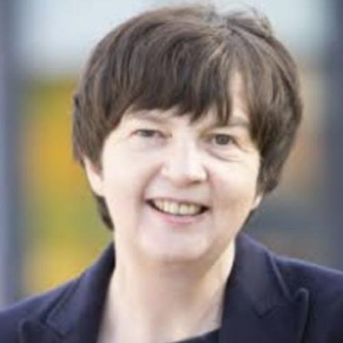 Professor Allison Littlejohn, Reconceptualising Learning in the Digital Age