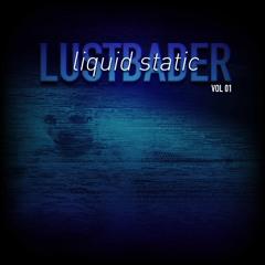 Liquid Static - VOL 01 (Lustbader's Liquid Static (Heavy Electrons) Mix VOL01)