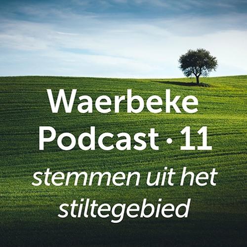 WP11 • Jan Mertens • Stilte en klimaatverandering