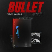 Bullet With My Name On It Artwork