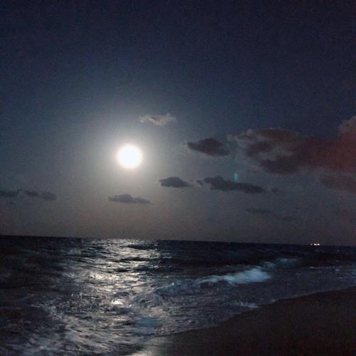 مابقى في الليل نور