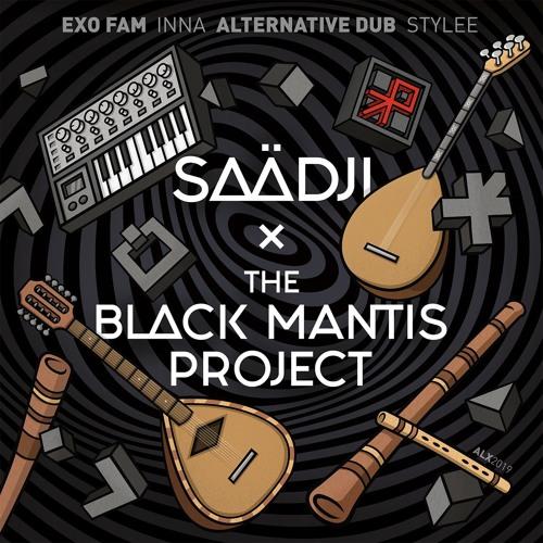 The Black Mantis Project - A Spicy Journey (Saadji Remix)
