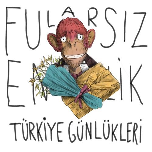Türkiye Günlükleri 1: Kimsenin Birbirini Dinlememesi