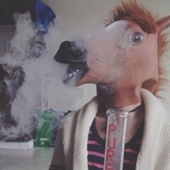 Get Off Your High Horse (just get high)