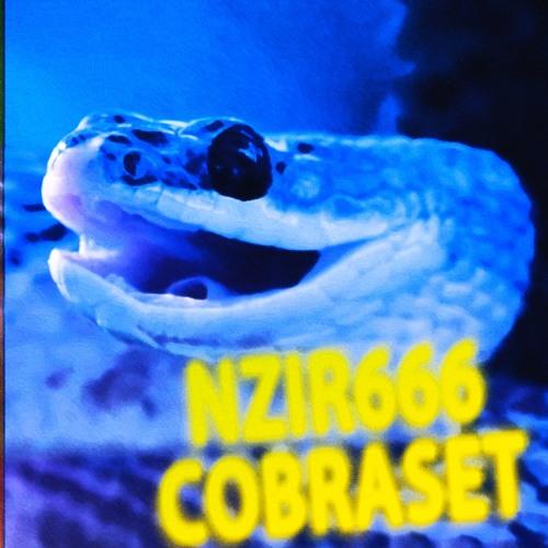 COBRASET