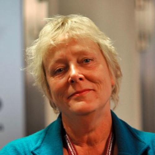 Linda Polman - Dubbel verdienen: wapenexport en grensbewaking