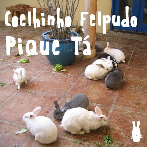 Coelhinho Felpudo - Pique Tá