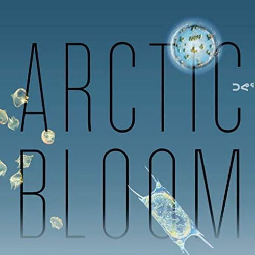 Arctic Bloom