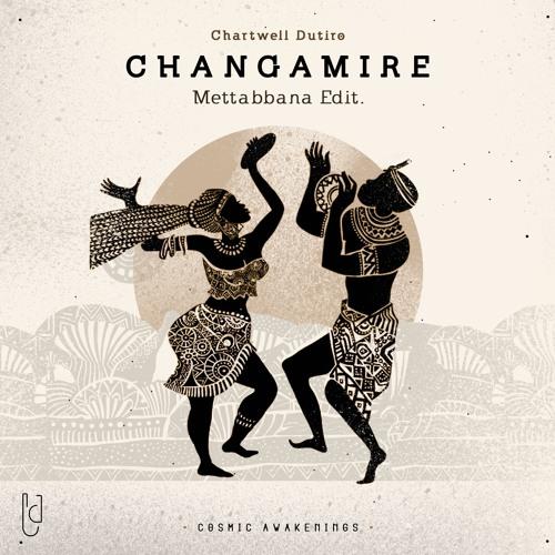 Chartwell Dutiro - Changamire (Mettabbana Edit)
