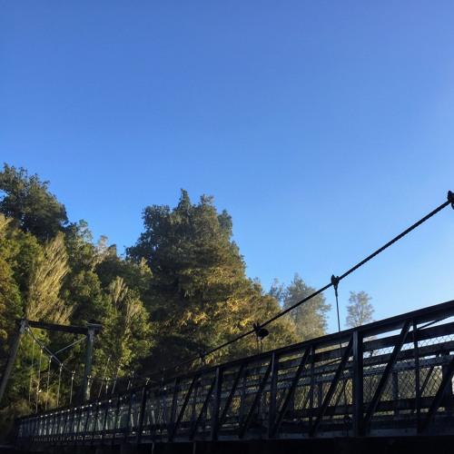 Lake Matherson Swing Bridge Morning