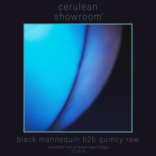 Black Mannequin b2b Quincy Raw - Cerulean Showroom 4