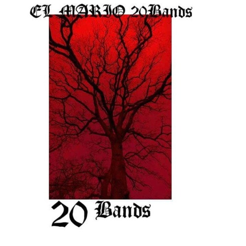 ElMario20Bands - Pain In My Vain