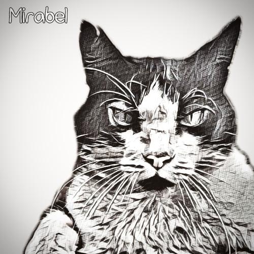 Whosten - Mirabel