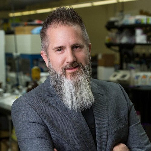 Shaping the Emerging Bioeconomy