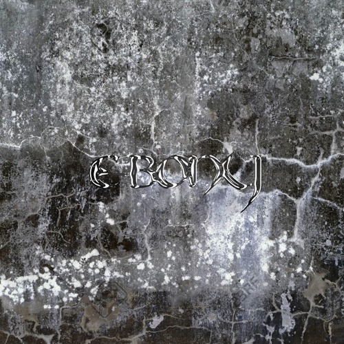 PAG026 — E-BONY