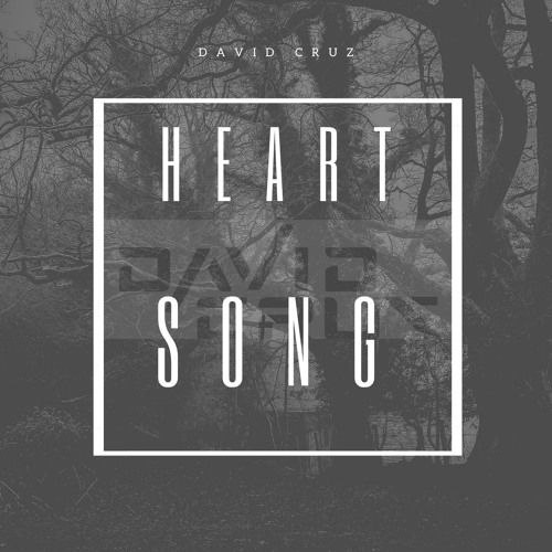 David Cruz - Heart Song ( Original Mix)