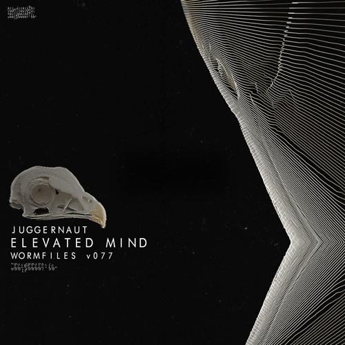 Elevated Mind - Juggernaut