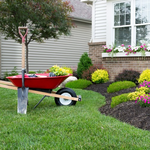 REMS  FROM YOUR MORTGAGE LOAN  TO YOUR LANDSCAPING - INNOVATE AND INITIATE YOUR PLAN   10 26 19