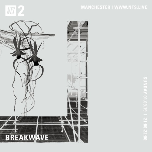 [BREAKWAVE - Ambient Set [NTS] 01 September 2019]