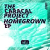 Download The Caracal Project - Cheylard [Bassrush Premiere] Mp3