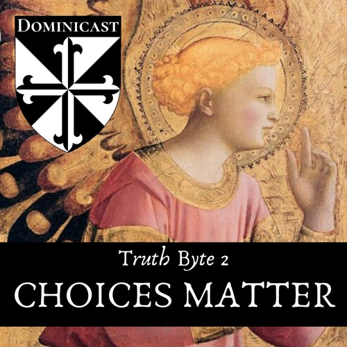 Choices - Truth Byte 2