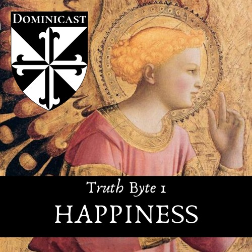 Happiness - Truth Byte 1