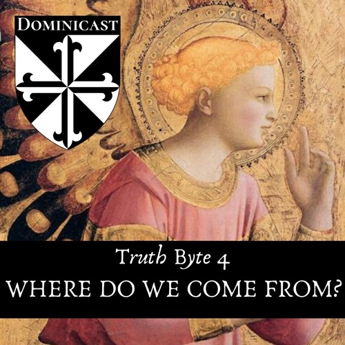 Where Do We Come From - Truth Byte 4