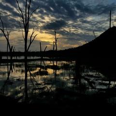 dawn, lake nuga nuga
