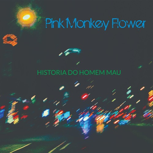 BURNING DOWNTOWN - Pink Monkey Flower