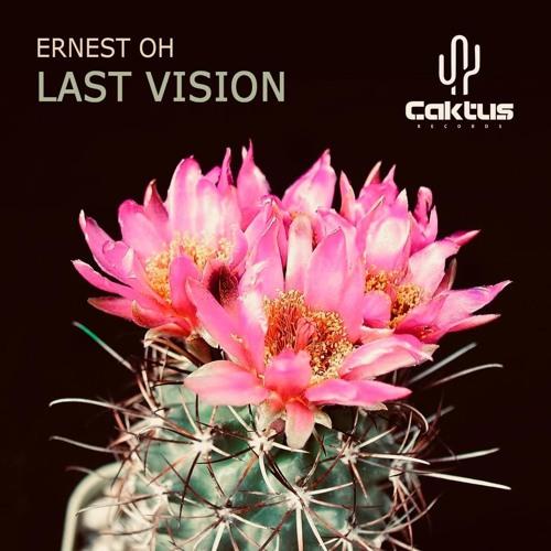 Last Vision (Original MIx)
