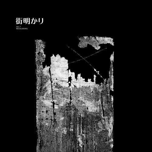 salt - assault on precinct 13 (machiakari, act400 / raub-076)