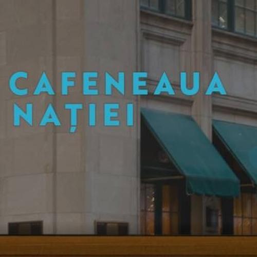 Ciprian Necula, activist Aresel, la Cafeneaua Nației