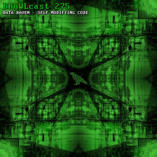 BRAWLcast 275 Data Raven - Self-modifying Code