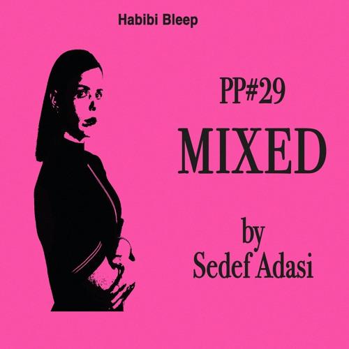 PP#29 BY SEDEF ADASI