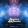 Download Ananda Shake - Total Overdose Remix ( Full Version) Mp3