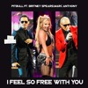 Download Britney Spears Ft Pitbull, Marc Anthony🤩I Feel So Free With You 🤩DJ FUri DRUMS Remix FREE DOWNLOAD Mp3